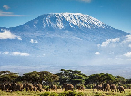 LRS Visits Kenya