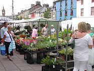 Machynlleth market, Dyfi Biosphere, Wales