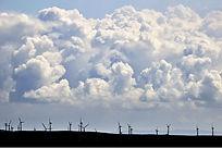 Windfarm Midwales