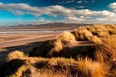 Ynyslas Dunes National Nature Reserve