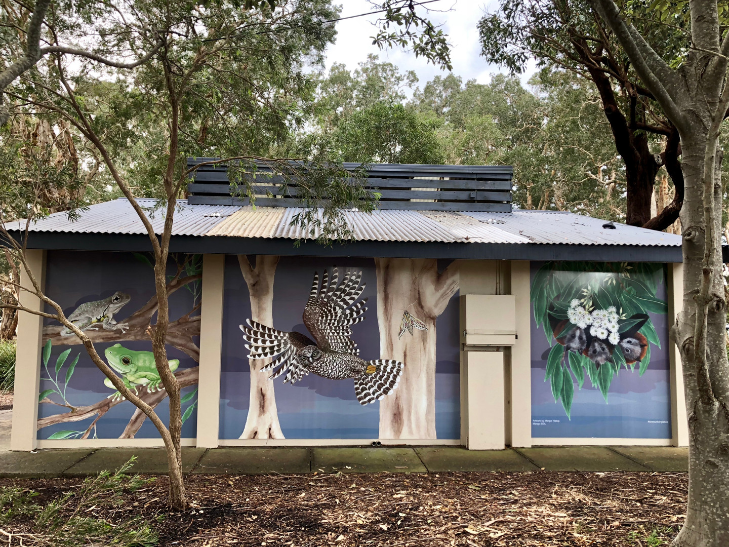 Frog, Owl and Bats panels