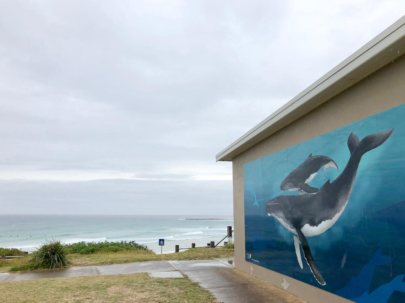 Soldiers Beach Whale Mural_Ocean
