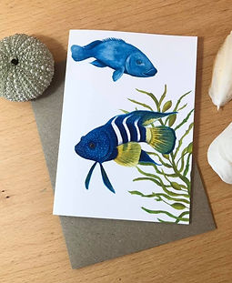 Blue fish front.jpg