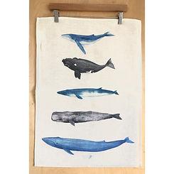 Tea towel whales.JPG