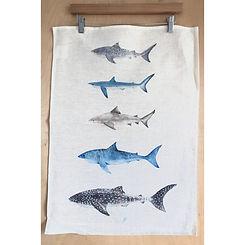 Tea towel shark.JPG