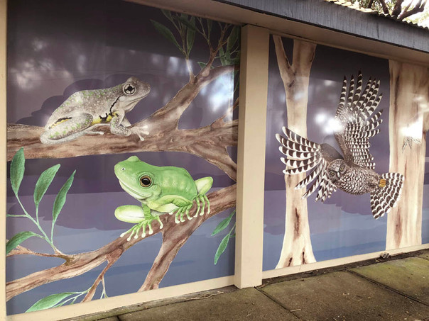 Frogs and Owl panels