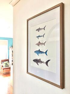 A2 Shark2.jpg