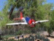 P 47 close-up.jpg