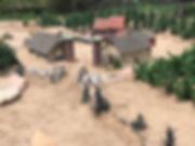 Viewed from east.JPG