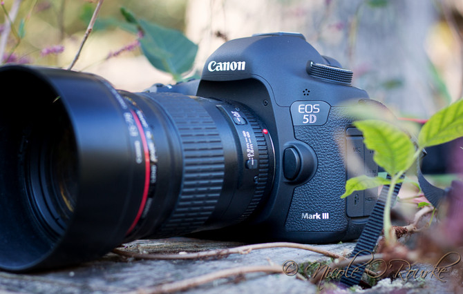 My dream camera 5d Mark iii