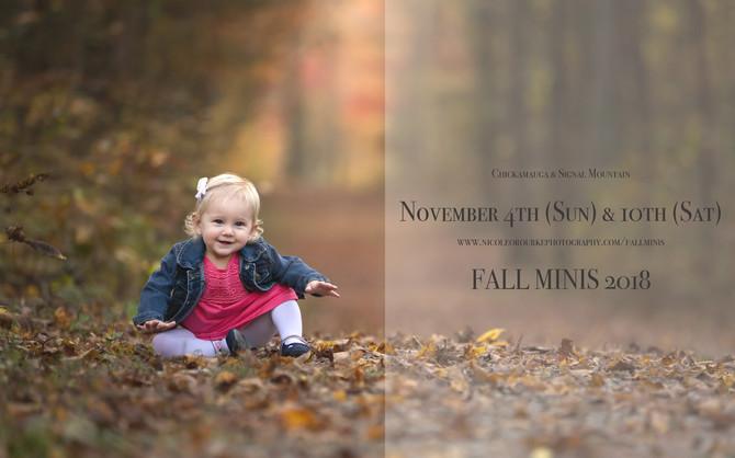 Fall Minis 2018!
