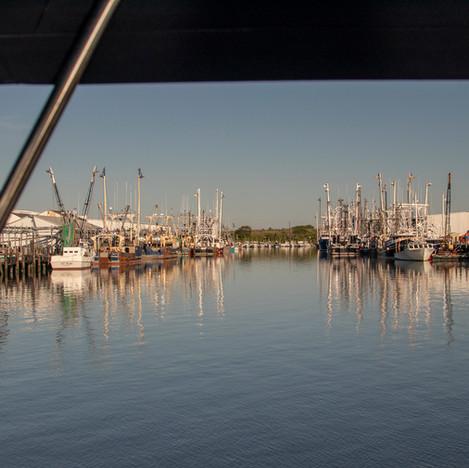 rag 1040 shrimp boats at processing plant Cape May.jpg