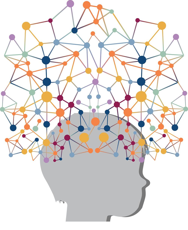 Neurociencia y aprendizaje. ALMA VELASCO ROSAS. EL BLOG DE EDUCACION.ORG