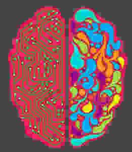 alma velasco rosas. neuromitos en el aprendizaje. el blog de educación
