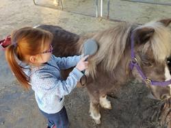 Pony playtime 2016 tori