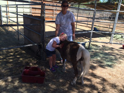 Horse Therapy with Katelyn