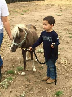 Layne 2yr pony playtime