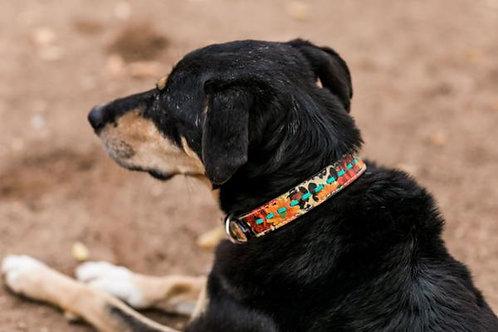 Wild Cheetah Dog Collar