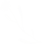 DoodleIndividual_0005_Flower-Small.png
