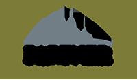 Reico-VP-Logo-200.png