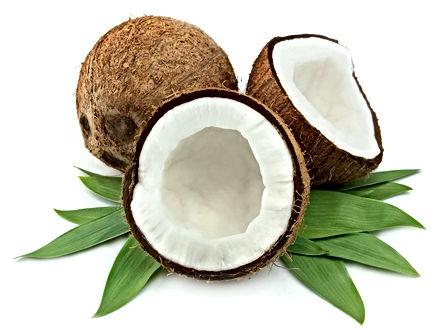 cocos_1.jpg