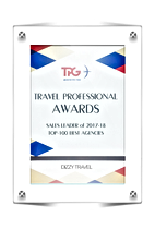 DIZZY travel TOP-100 BEST AGENCIES 2017-2018.png