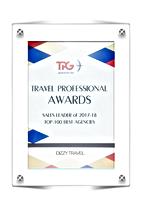 DIZZY travel TOP-100 BEST AGENCIES 2017-2018.png
