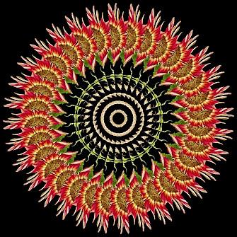 Spinning Sunflower