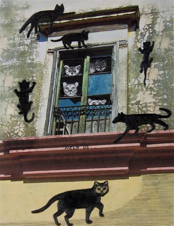 Cats, Cats,Cats