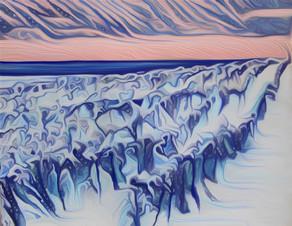 winter in the vineyars