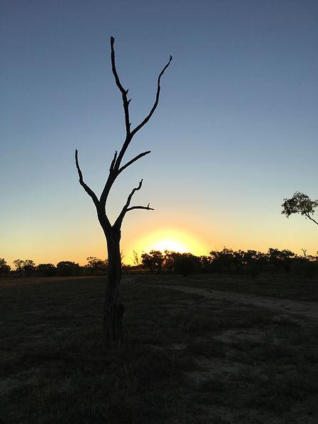 Cunnamulla Sunset