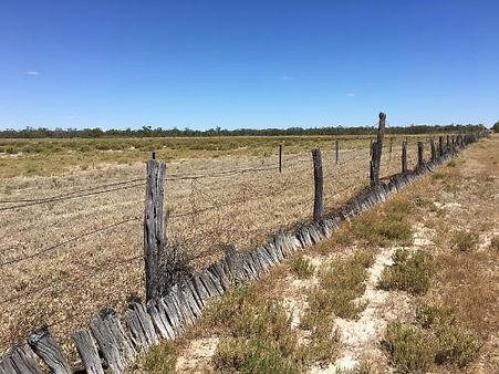 Rabbit-proof fence, Murra Murra Station