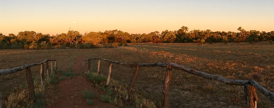 Moonrise on the River Walk, Cunnamulla