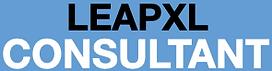 LeapXL Consultant