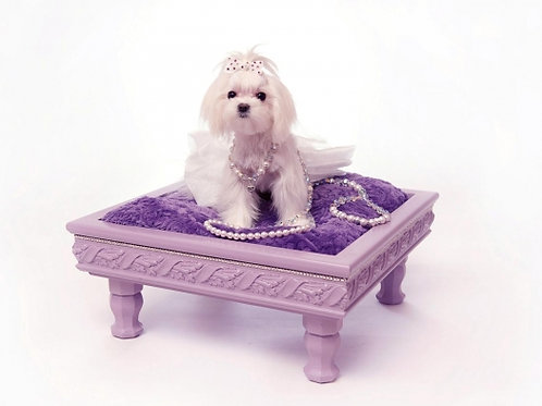 The Paisley Lounger
