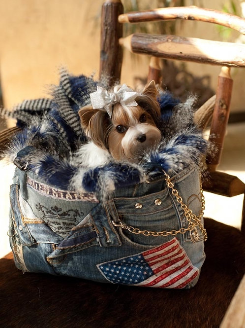 All around the World USA Denim Carrier
