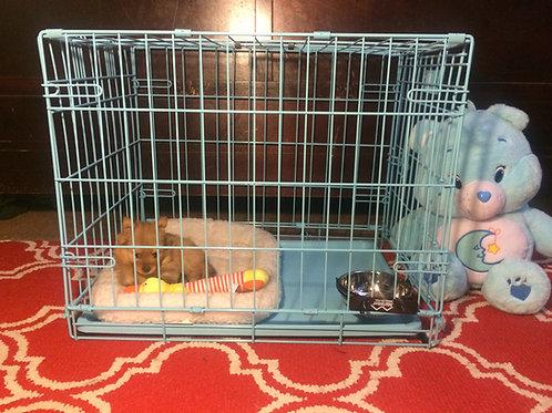 Blue Prince Puppy Sleeping Castle Starter Kit