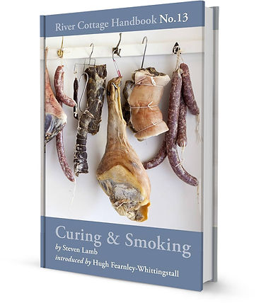 Curing & Smoking - Steven Lamb.jpg