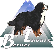 Berner Lovers Logo Blue_Green.jpg