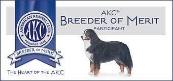 AKC Breeder of Merit