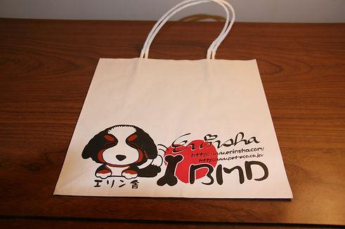 T2 - 39 - shopping bag.JPG