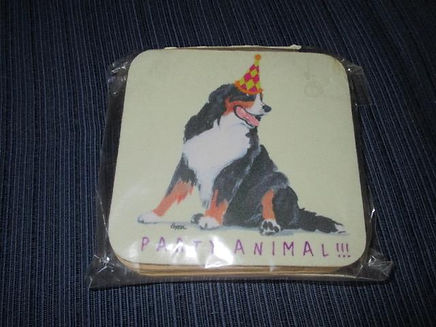 NB 104 13 - party animal coaster.jpg