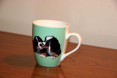 T2 - 61 - Puppy Mug.jpg