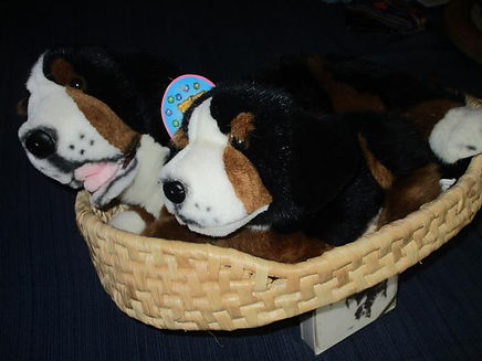 NB 102 11 - basket with two berners.jpg