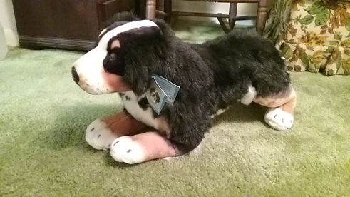 T2 - 68 - Stuffed Dog.jpg