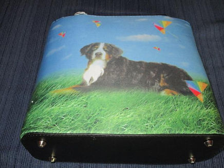 NB 98 9 - purse.jpg