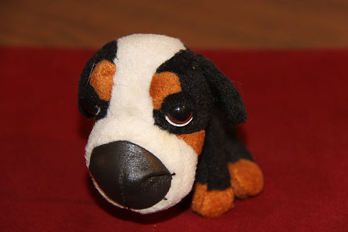 B14 88 5-IMG_0431 little stuffed berner.