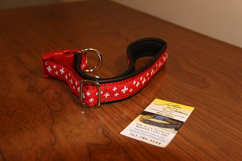 21_IMG_0292_keeper_collar.jpg
