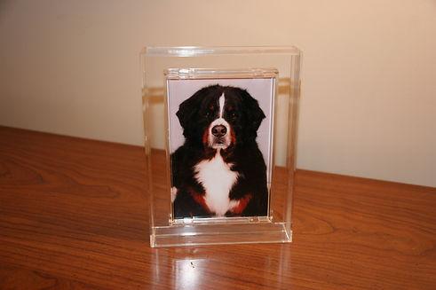 T2 - 20 - acrylic frame.JPG