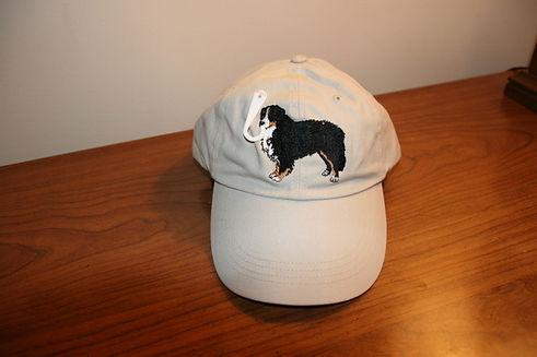 T2 - 03 - correct cap.JPG